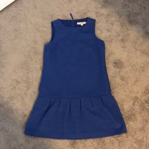 Ann Taylor Loft pleated skirt dress